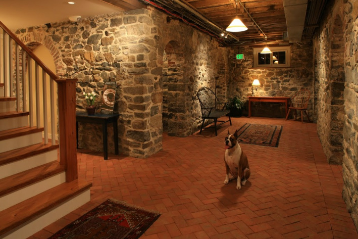 Picture dog on brick tile floor, stone walls