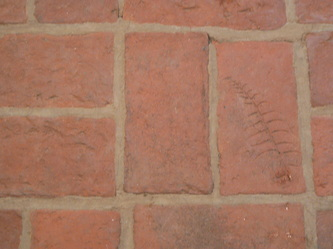 Brick flooring with leaf impression